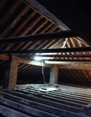 Imagen de carcoma en estructura de madera