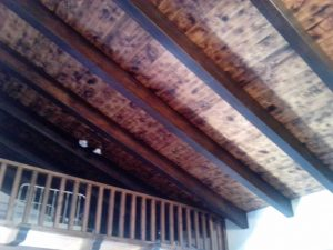 Imagen de efecto de las termitas en artesanado 3